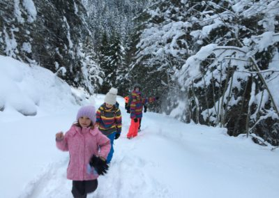 Winter_Weg_zur_Huette-1