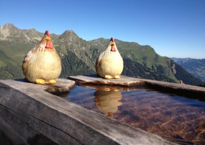 Brunnen-Henne-Gampaping-Alpe