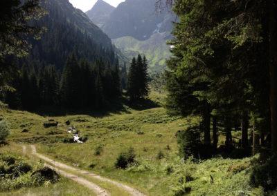 Valisera-Alpe